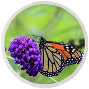 Round Beach Towel featuring the photograph Monarch And Black Knight by Dawn Richards