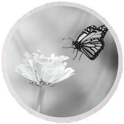 Monarch In Infrared 6 Round Beach Towel