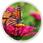 Monarch Visiting Zinnia Round Beach Towel