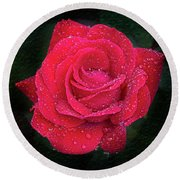 Morning Mist On Red Rose Round Beach Towel
