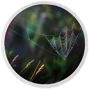 Round Beach Towel featuring the photograph Morning Spider by Bill Wakeley