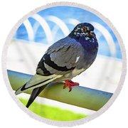 Mr. Pigeon Round Beach Towel