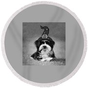 Round Beach Towel featuring the photograph Mr. Wizard by Sue Collura