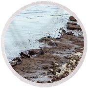 Muddy Sea Shore Round Beach Towel
