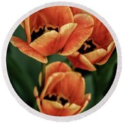 Multi-colored Tulips Round Beach Towel