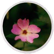 Multi Floral Rose Flower Round Beach Towel