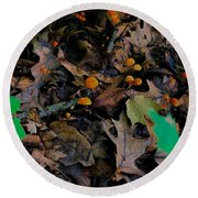 Round Beach Towel featuring the photograph Mushrooms And Leaf Litter by Lukas Miller