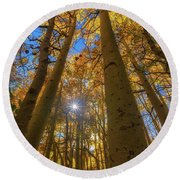 Round Beach Towel featuring the photograph Natures Gold by Tassanee Angiolillo