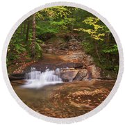 Round Beach Towel featuring the photograph Nature's Swirl by Sharon Seaward