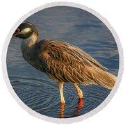 Night Heron Dribble Round Beach Towel