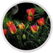 Night Tulips Round Beach Towel