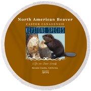 North American Beaver Round Beach Towel
