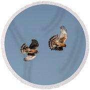 Northern Harriers 7 Round Beach Towel