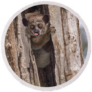 Round Beach Towel featuring the photograph Nyah by Alex Lapidus