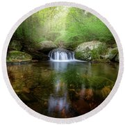 Round Beach Towel featuring the photograph Oasis by Bill Wakeley