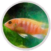 Orange Cichlid Chalk Smudge Round Beach Towel