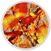 Orange Fall Leaves Round Beach Towel