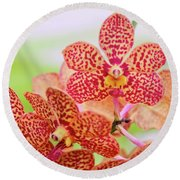 Orange Spotted Orchids Round Beach Towel