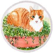 Orange Tabby Cat In Flower Pot Round Beach Towel