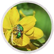 Orchard Bee Round Beach Towel