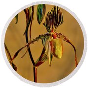 Orchid Study Eight Round Beach Towel