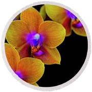 Orchid Study Ten Round Beach Towel