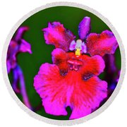 Orchid Study Three Round Beach Towel