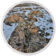 Ornate Boulder Beneath The Book Cliffs Round Beach Towel