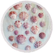 Calico Scallop Assembly   Round Beach Towel