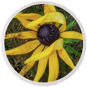 Round Beach Towel featuring the photograph Out Of The Ordinary by Dale Kincaid