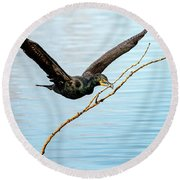 Over-achieving Cormorant Round Beach Towel