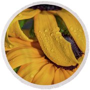 Round Beach Towel featuring the photograph Overshadowing by Dale Kincaid