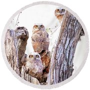 Owl Trio Standing Guard Round Beach Towel