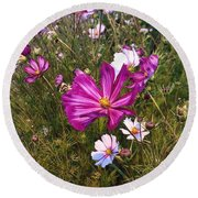Round Beach Towel featuring the photograph Painted Cosmos by Brian Eberly