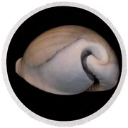 Painted Shell No. 10 Round Beach Towel