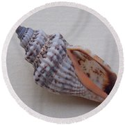 Painted Shell No 24 Round Beach Towel