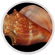 Painted Shell No. 9 Round Beach Towel