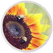 Round Beach Towel featuring the photograph Painted Sun by Candice Trimble