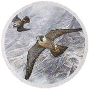 Round Beach Towel featuring the painting Pair Of Peregrine Falcons In Flight by Alan M Hunt