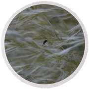 Pampas Grass And Insect Round Beach Towel