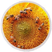 Round Beach Towel featuring the photograph Party by Candice Trimble