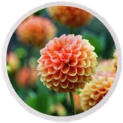 Peach Dahlias Round Beach Towel