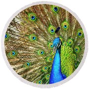 Peacock Colors Round Beach Towel