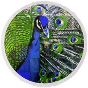 Round Beach Towel featuring the painting Peacock by Dustin Miller
