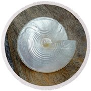 Pearly Cone Seashell 3 Round Beach Towel