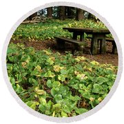Picnic  Table In The Forest  Round Beach Towel