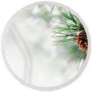 Pine Branch Under Snow Round Beach Towel