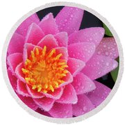 Pink Petals In The Rain  Round Beach Towel