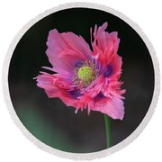 Round Beach Towel featuring the photograph Pink Poppy by Dale Kincaid