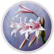 Pink Striped White Lily Flowers Round Beach Towel